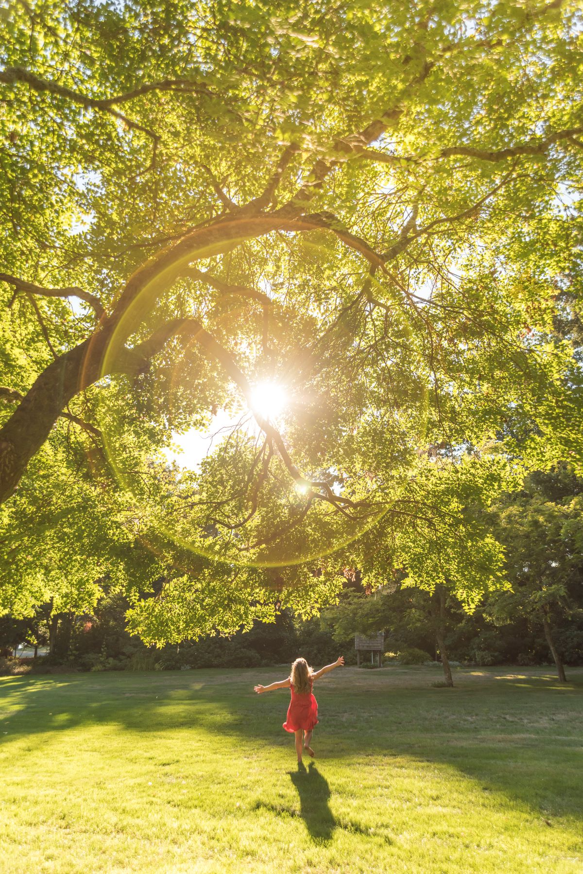 A young girl running under a big tree in the sunshine